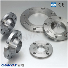 Stainless Steel Threaded Flange (F316Ti, F317L, F309H)